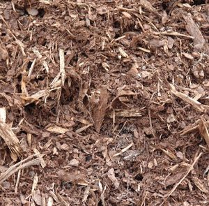 light-pine-spruce-blend-mulch
