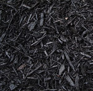midnight-black-mulch